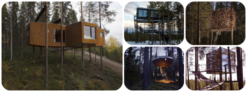 Best Treehouse Hotels Teehotel Sweden