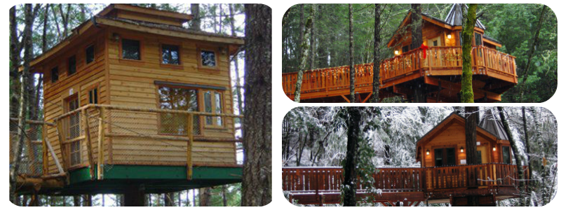 Best TreeHouse Hotels - Vertical Horizons Treehouse Paradise