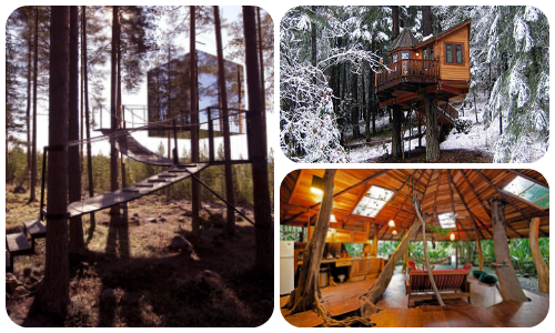 Best Treehouse Hotels Featured